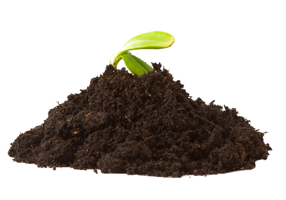 2 When watered, the silica and minerals time release into the soil, strengthening stalks and enhancing growth of roots for better nutrient uptake.
