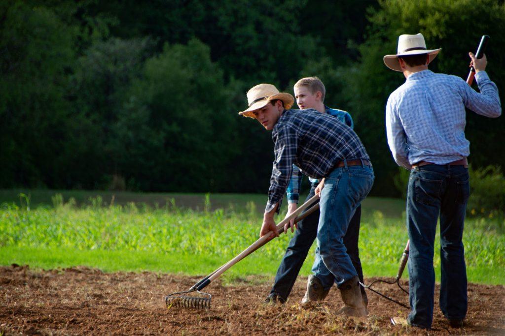 Raking soil garden